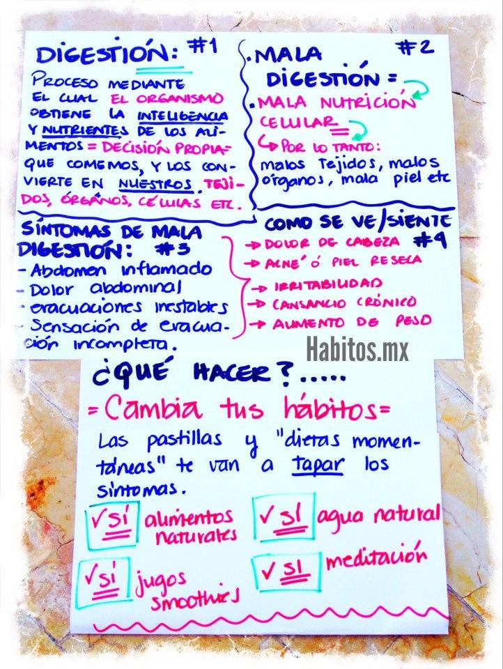 Buenos hábitos - Qué hacer para cambiar una mala digestión