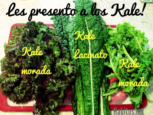 Recetas - presentación de los Kale