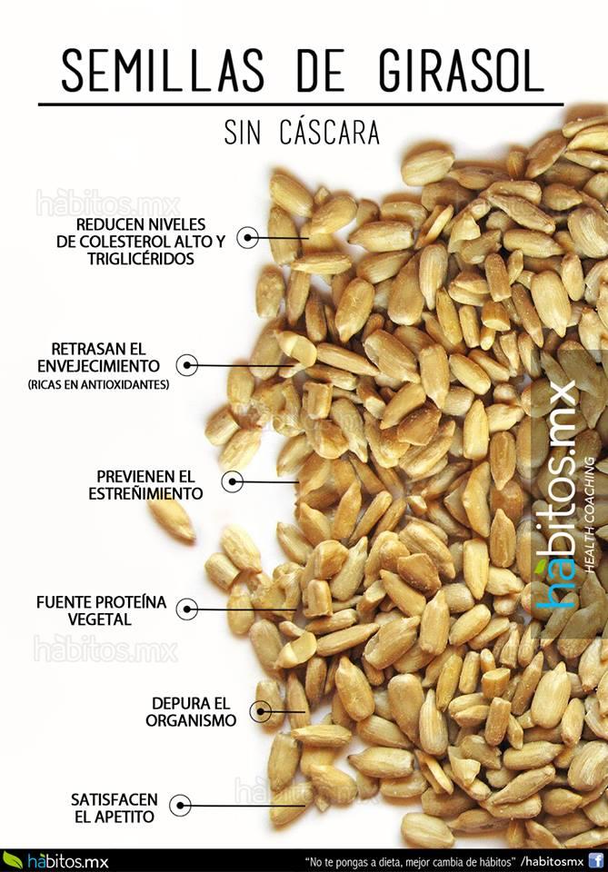 propiedades del girasol semilla