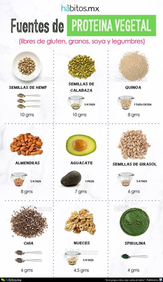 H bitos health coaching fuentes de prote na vegetal libre de gluten de granos de soya y de - Alimentos ricos en proteinas pdf ...