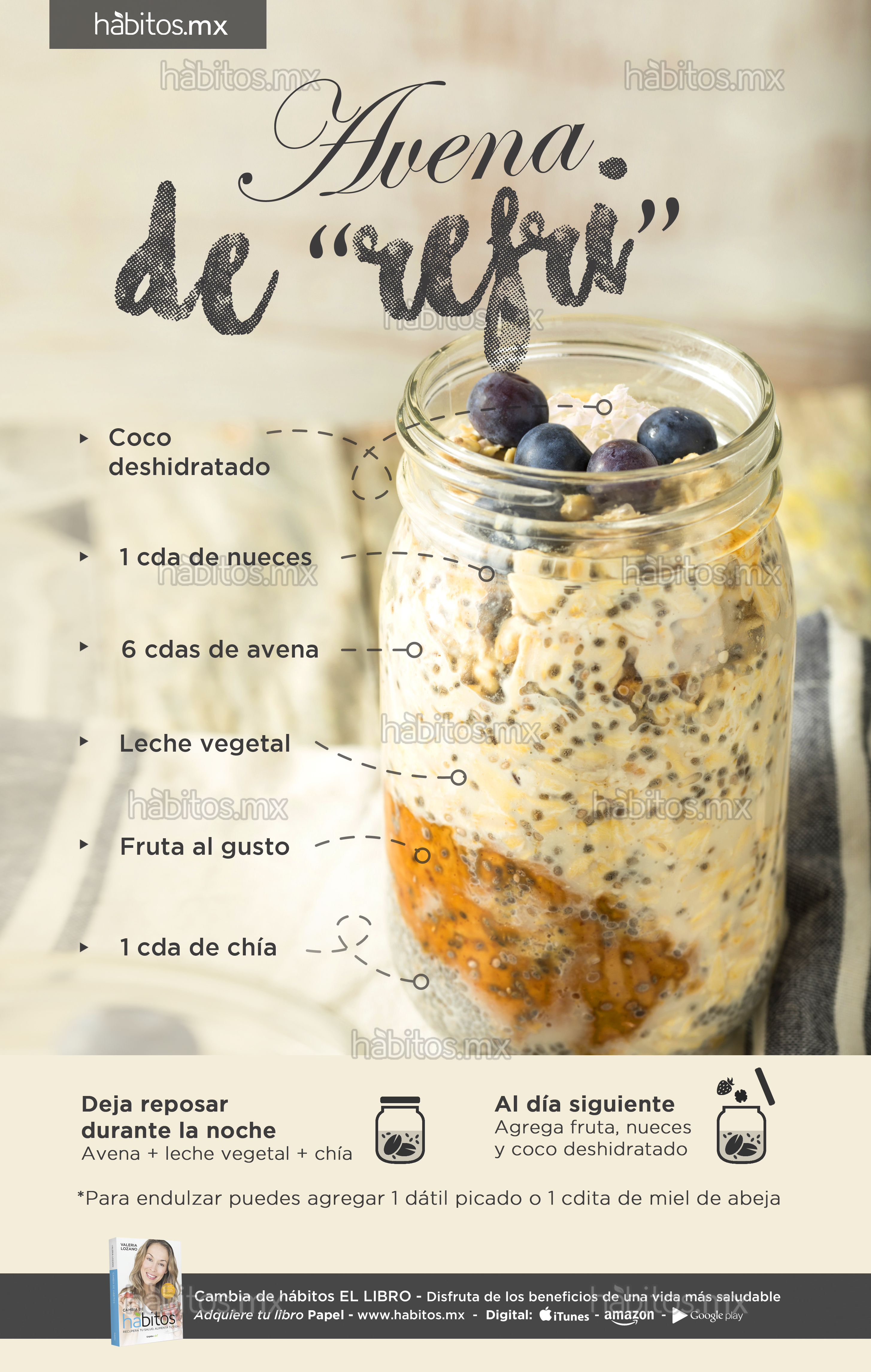 Healthy Homemade Overnight Oats Oatmeal